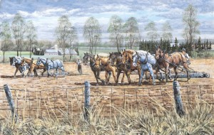 It always amazed me how they could control 6 horses!