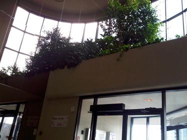 photo-of-lobby