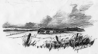 Sketch-farm field 001
