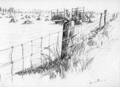Sketch-fence line 001